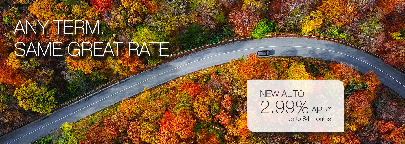 New Auto - Any term. Same great rate. New Auto 2.99%* up to 84 months